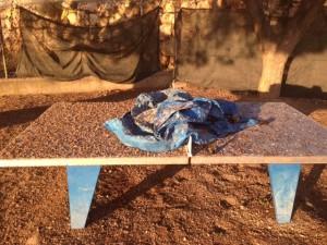 Mesa ping-pong  en Colegio Aragón afectada por estorninos este invierno.