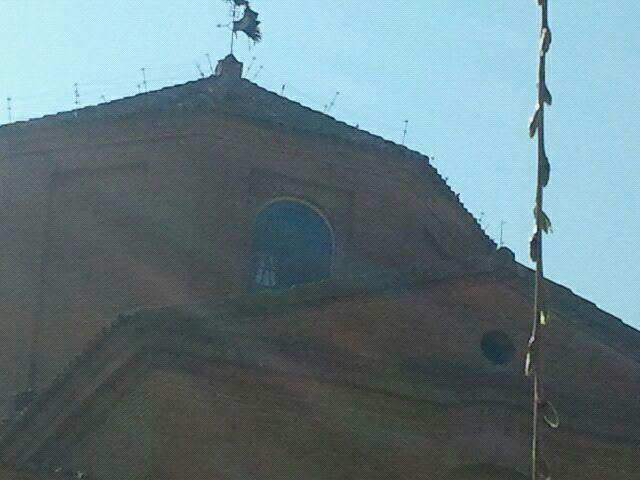 Preguntamos al Gobierno por los permisos para la instalación de un pastor eléctrico en la iglesia de Alcolea del Cinca y presentaremos una denuncia ante el Seprona