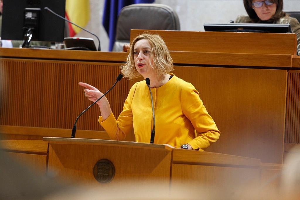 Reclamamos al Gobierno de Aragón que se oponga a la Sabiñánigo-Marsillón o a cualquier otro trazado de Alta tensión o autopistas eléctricas por el Pirineo Central