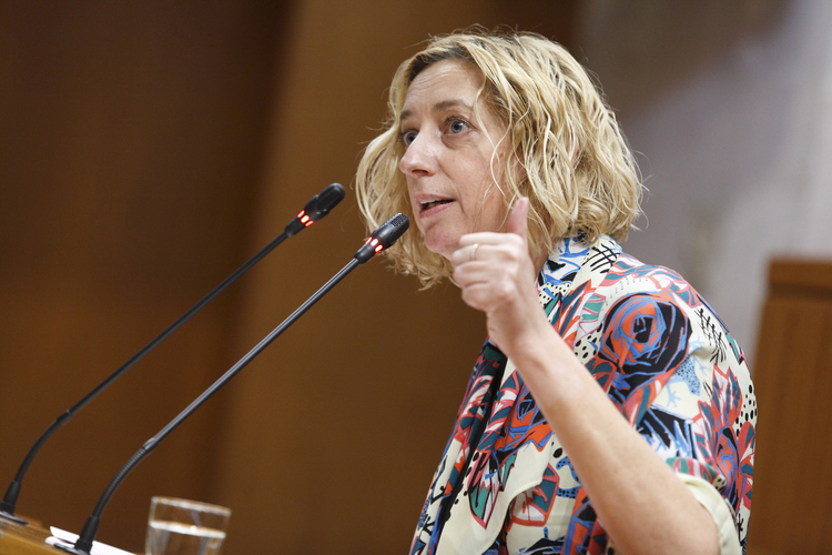 Actividad parlamantaria en el primer año de la IX Legislatura de las Cortes de Aragón