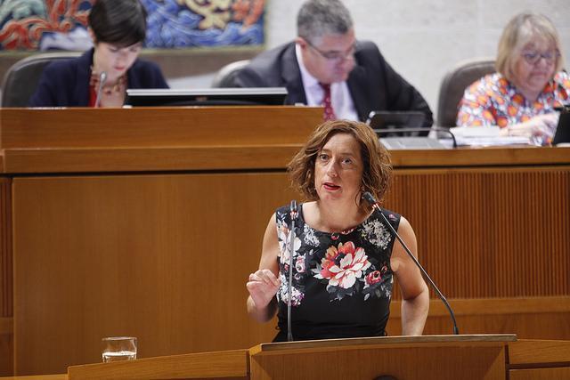 Pedimos información al Gobierno de Aragón sobre el convenio urbanístico de Cerler