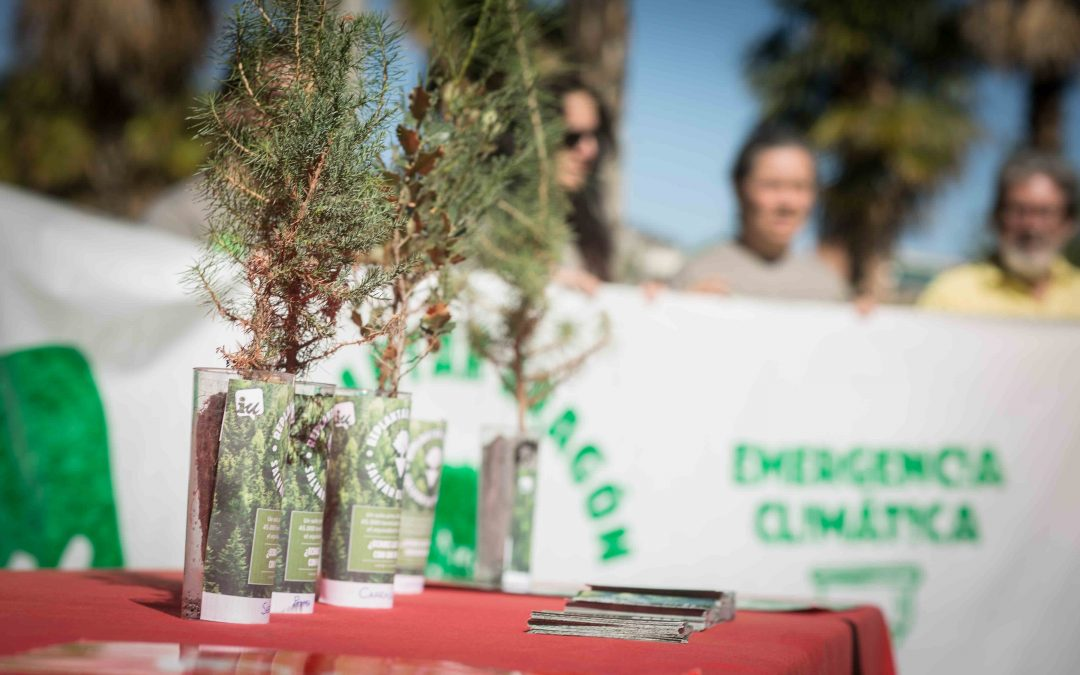Plantaremos 500 árboles autóctonos en las Cinco Villas ¿te apuntas?