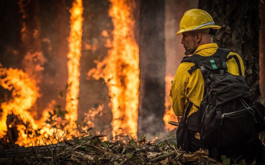 Pediremos explicaciones en las Cortes ante el recorte del periodo de contratación del operativo antiincendios