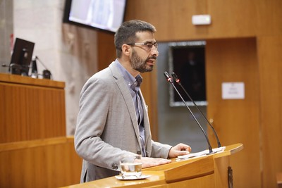 """Sanz: """"El consejero Faci no aclara el futuro de las altas ratios en los colegios del sur de Zaragoza"""""""