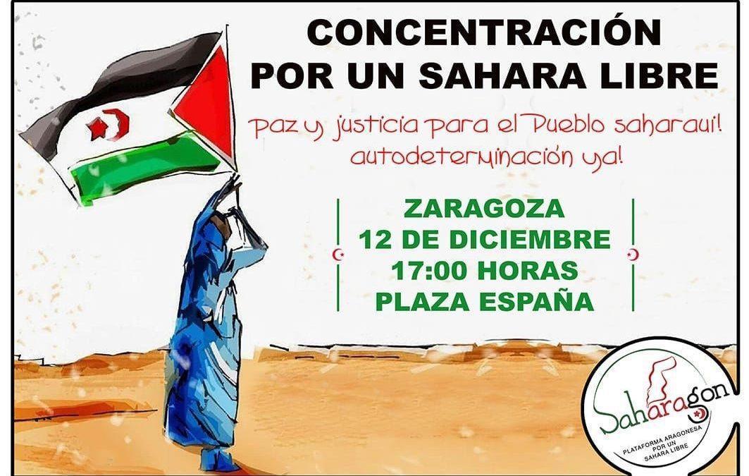 Nos adherimos al manifiesto de SAHARAGON por un Sahara libre