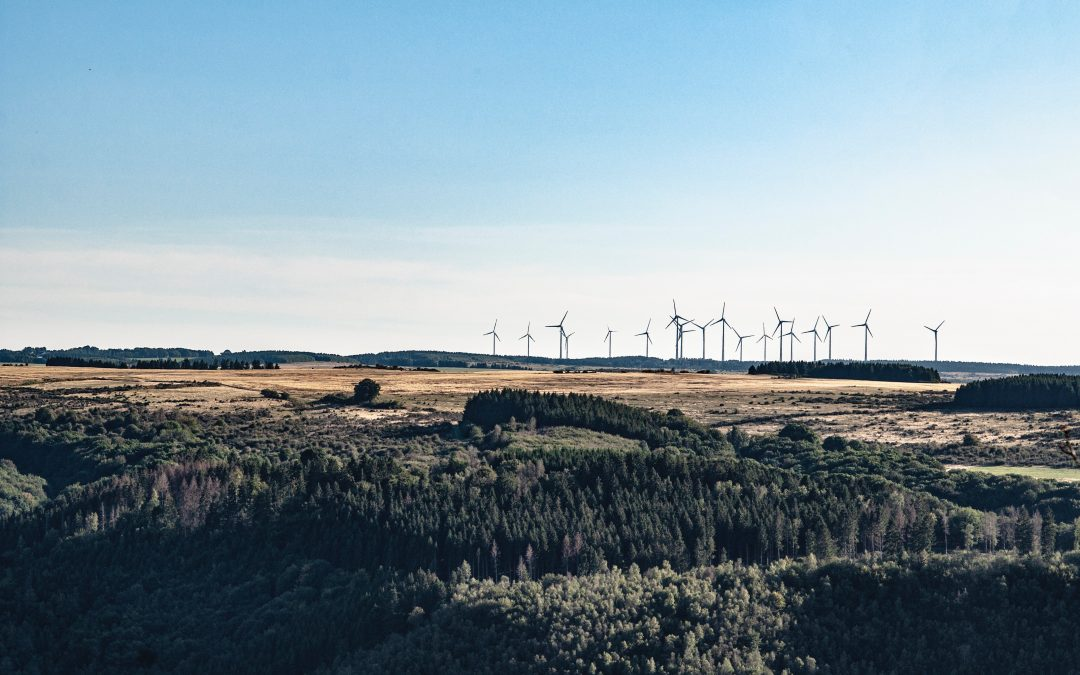 Trasladamos a las Cortes las reivindicaciones de la Gent del Matarranya y reclamamos una moratoria temporal de los proyectos de renovables no aprobados
